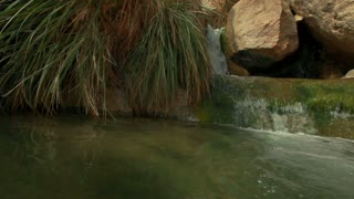 Pool of Water at Ein Gedi