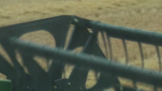 Pov Of Combine Harvesting Wheat