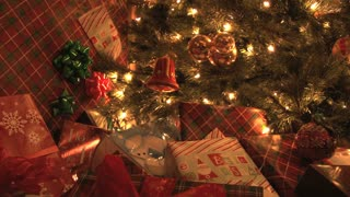 Presents Under The Tree 2