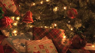 Presents Under The Tree 3