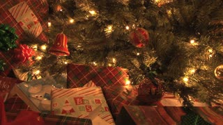 Presents Under The Tree 5