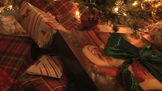Presents Under The Tree 6