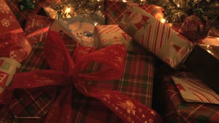 Presents Under The Tree 7