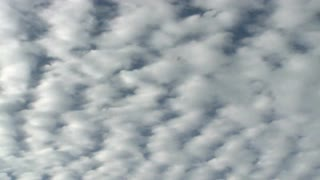 Puffy Clouds Stretch Over Sky
