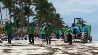 PUNTA CANA, DOMINICAN REPUBLIC - NOVEMER 12, 2014: Workers cleaning resort beach from sea wrack and garbage. Tractor with container moving behind
