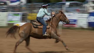 Racing Horse In Rodeo