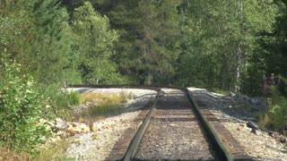 Railroad Tracks Through Forest
