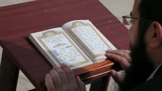 Reading a prayer book at the Wailing wall, refered to as the Western wall or Kotel, Middle East, Israel, Jerusalem,