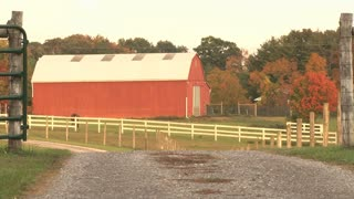 Red Barn With A Horse