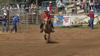 Relay Rodeo Horse Race