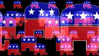 Republican Elephants On Black