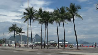 Rio Copacabana With Palm Trees