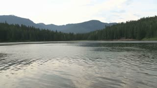 Ripples On Lake In Whistler British Columbia