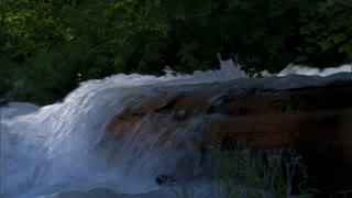 River Dam In Park