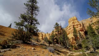Rock Formations and Trees in Utah Canyon