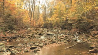 Rocky Creek in Autumn Woods 3
