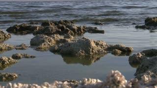 Rocky Salton Sea Shore