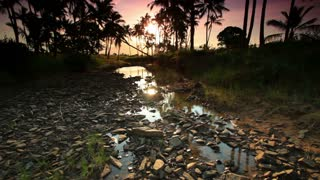 Rocky Stream with Trees and Sunset