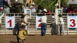 Rodeo Bull Rider Thrown