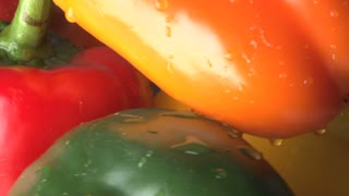 Rotating Red, Orange, Yellow and Green Bell Peppers