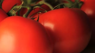 Rotating Tomatoes Close Up
