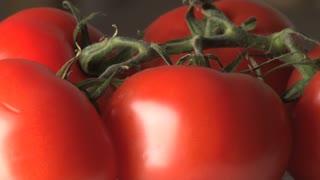 Rotating Tomatoes