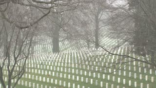 Rows Of Graves In Arlington