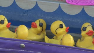 Rubber Ducks Floating in Carnival Game