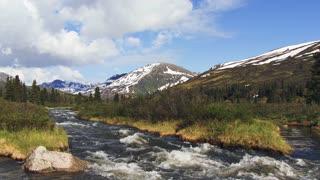 Rushing Creek On Mountainside