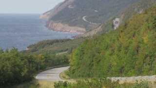 Rustling Trees Along Scenic Coastal Highway