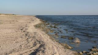 Salton Sea Coastline Timelapse