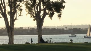 San Diego Public Park Trees Water Sailboat Sun Setting