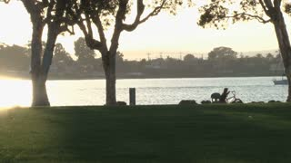 San Diego Public Park Trees Water Sun Setting