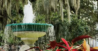 Savannah Square Fountain Framed by Moss