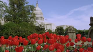 Scenic Capitol Building And Garden