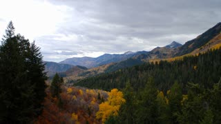 Scenic Mountain View With Autumn Trees