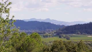 Scenic Napa Valley Landscape
