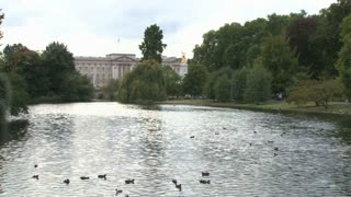 Scenic River Tyburn By Buckingham Palace