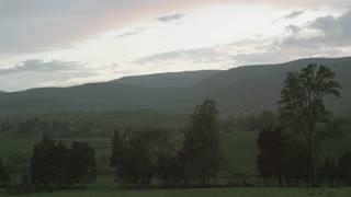 Scenic Trees On Hills