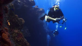 Scuba Divers Swimming Along Edge of Coral Reef