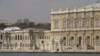 Seagulls Flying by Dolmabahce Palace