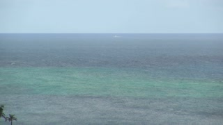 Shallow Caribbean Sea Layered Blue