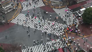 Shibuya, Shibuya Crossing, crowds of people crossing the famous crosswalks at the centre of Shibuyas fashionable shopping and entertainment district, elevated view, Tokyo, Japan, Asia