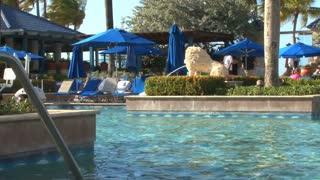 Shimmering Poolside