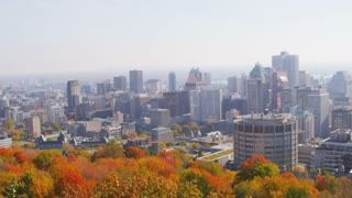 Shot of Montreal Skyline with Trees
