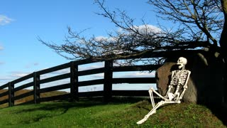 Skeleton HIllside Color 2. Skeleton resting on a picturesque country hillside. Shot in time lapse.