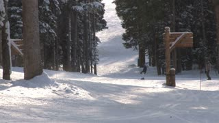 Skiing Down Tree Lined Path 2