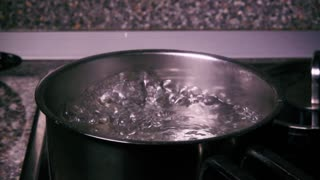 Slow mo sprinkle salt into the pan of boiling water