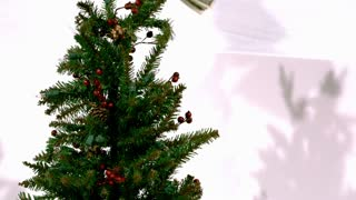 Slow Motion Bills on Christmas Tree 1