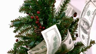 Slow Motion Bills on Christmas Tree 4